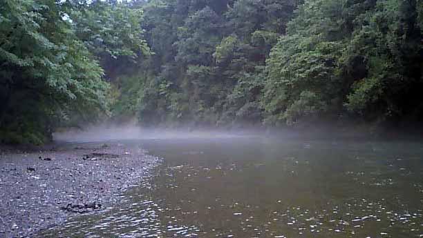 入間高麗川2
