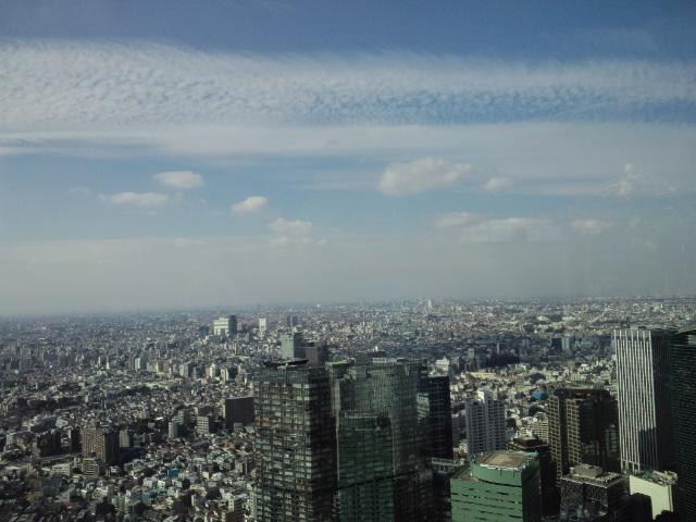 都庁からの眺め◯
