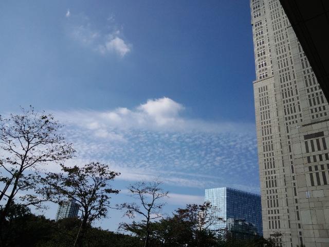 都庁の外の空
