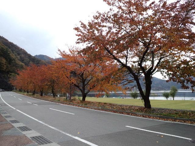 秋の道の駅