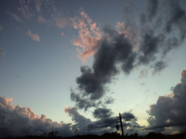 蒼い夕焼け