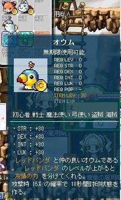 Maple120314_062154.jpg