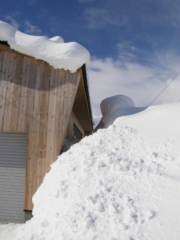 屋根より高い雪