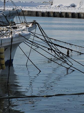 漁港係留風景