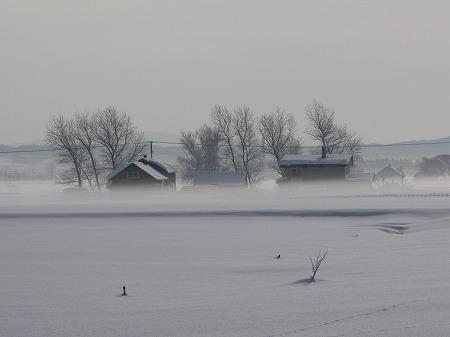 雪原と表層の霧1