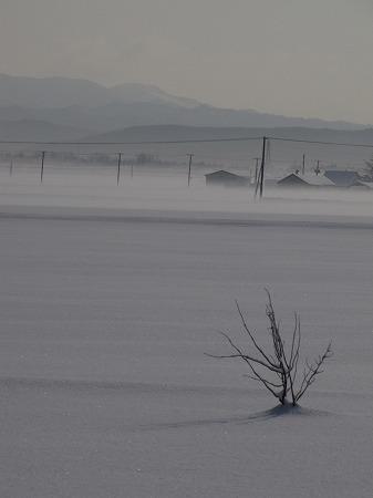 雪原と表層の霧2