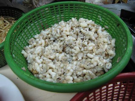 虫?幼虫?米ではないが・・。