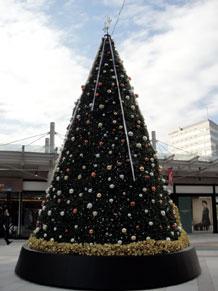 2010-11-17.jpg