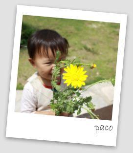 IMG_3381-1.jpg