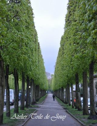 ベルサイユ