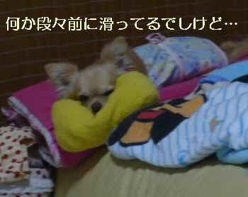 blog2010060405.jpg