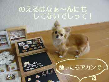 blog2010060802.jpg