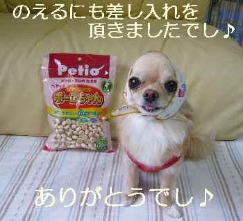 blog2010061501.jpg