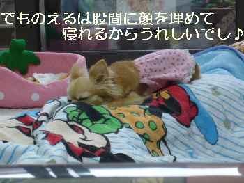 blog2010061802.jpg