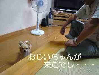blog2010062301.jpg
