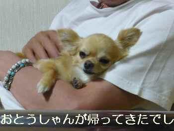 blog2010070604.jpg
