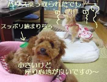 blog2010071305.jpg