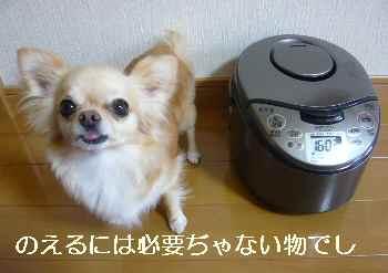 blog2010071702.jpg
