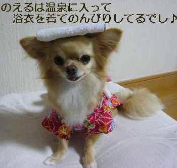blog2010071901.jpg