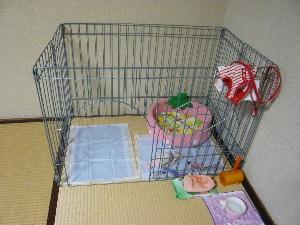 blog2010072001.jpg