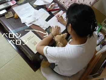 blog2010072503.jpg