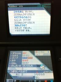 IMG_3623.jpg