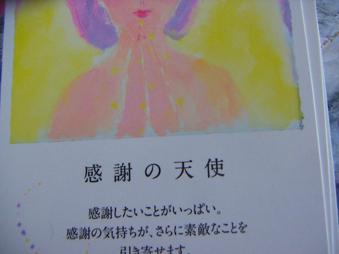 PICT0017_20110627171447.jpg