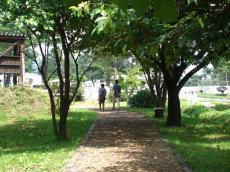 平成23年8月17日 牧場に向かう父と娘
