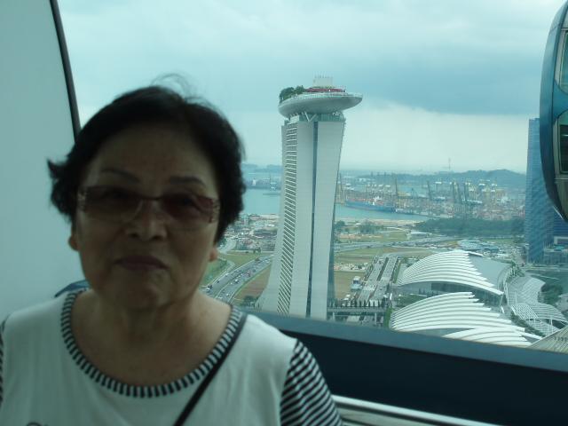 12-01-26シンガポール 154