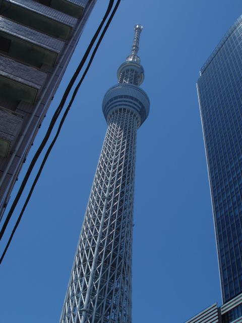 12-07 -17東京黄色いビルのツリー