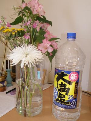 P1170044仏花