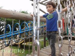 DSC05226_convert_20110730041027.jpg