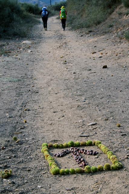 Camino de Santiago Day 24 - 111