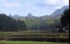 英彦山と鷹ノ巣山