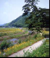 太田宿付近