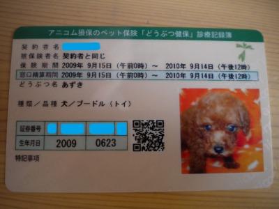 DSCN1402.jpg