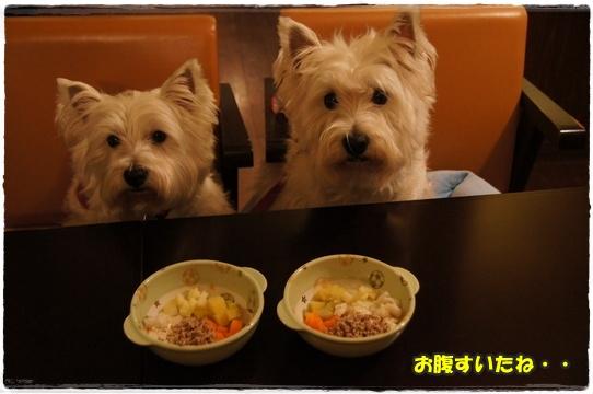 dinner4
