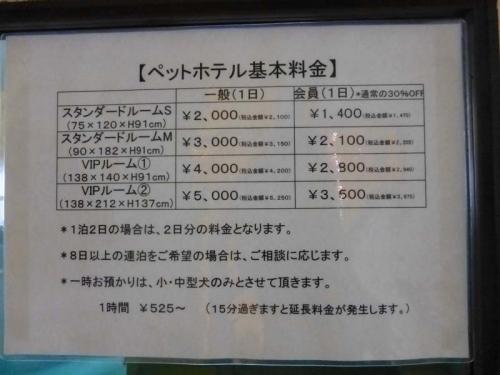P1150465+AZUKI.jpg