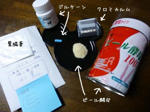 P1150752_AZUKI.jpg
