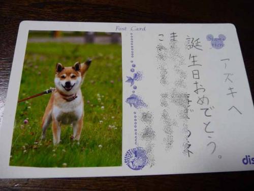 P1270659-AZUKI.jpg