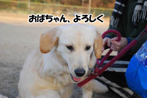 20110125_1061.jpg