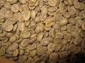コロンビア・サンアウグスティン生豆