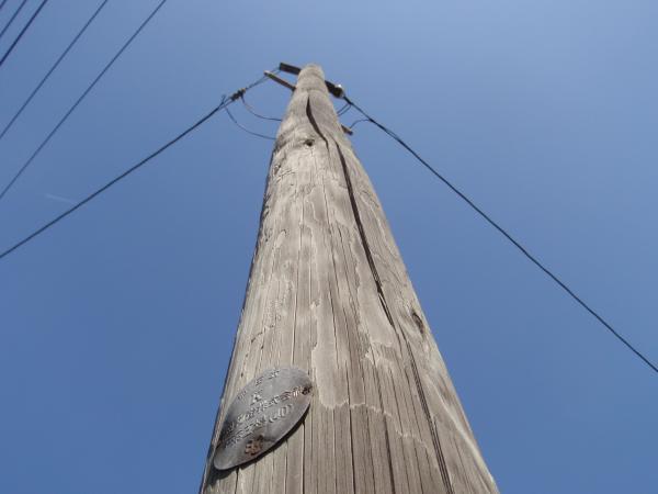 木製電柱1