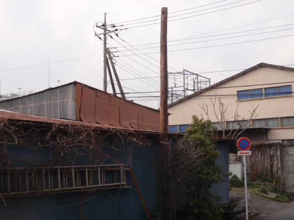 木製電柱4