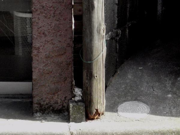 木製電柱6