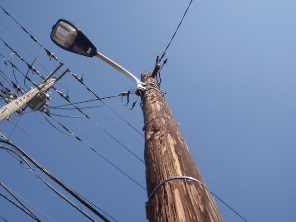 木製電柱8