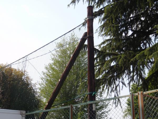 木製電柱10