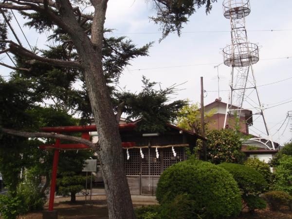木製電柱12