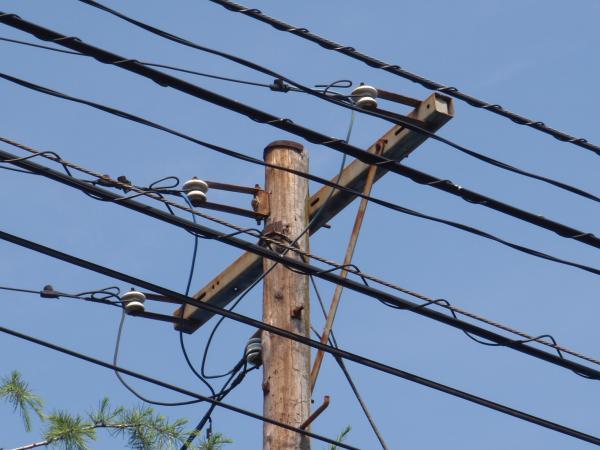 木製電柱13