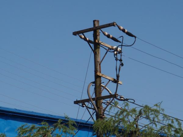 木製電柱15